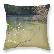 White River Throw Pillow