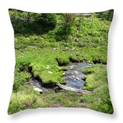 White River Pass Stream Second View Throw Pillow