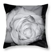 White Rose Passion Impression Throw Pillow
