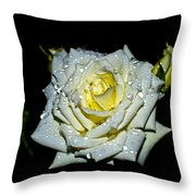 White Rose With Dew Throw Pillow