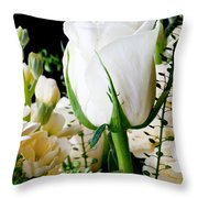 White Roses Close Up Throw Pillow