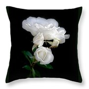 White Roses In The Moonlight Throw Pillow