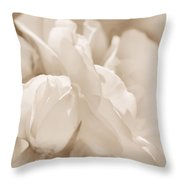 White Roses Soft Brown Throw Pillow