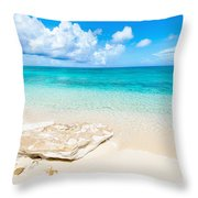 White Sand Throw Pillow by Chad Dutson
