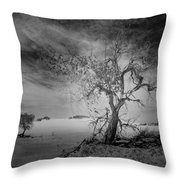 White Sands National Monument 1 Dark Mono Throw Pillow