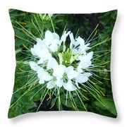 White Satellite Throw Pillow