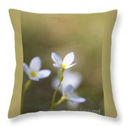 White Serenity Throw Pillow