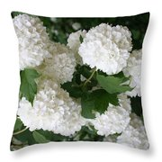 White Snowball Bush Throw Pillow