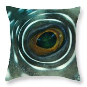 White-spotted Pufferfish Eye Throw Pillow