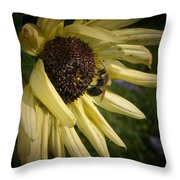 White Sunflower And Bee Throw Pillow