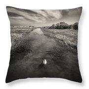 White Swan Throw Pillow