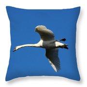 White Swan In Flight Throw Pillow