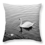White Swan Solitary Throw Pillow