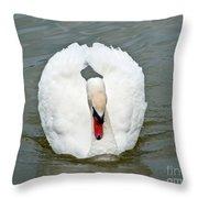 White Swan Swimming Throw Pillow