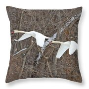 White Swans In Flight 1589 Throw Pillow
