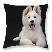 White Swiss Shepherd Dog Throw Pillow