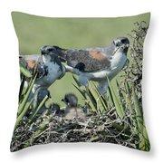 White-tailed Hawk Family Throw Pillow