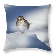 White Throated Sparrow Square Throw Pillow