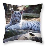 White Tiger Cub Throw Pillow