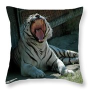 White Tiger Reno Nv 3 Throw Pillow