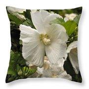 White Tree Flower Throw Pillow