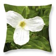 White Trillium Flower Throw Pillow