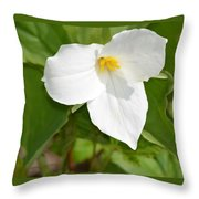 Spring In The Northwoods Throw Pillow