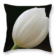 White Tulip 1 Throw Pillow