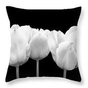 White Tulip Triple On Black Throw Pillow