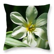 White Tulip Wide Open - Featured 3 Throw Pillow