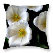 White Tulips Throw Pillow