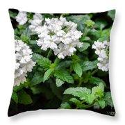 White Verbena Art Throw Pillow