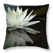 White Water Lily Reflections Throw Pillow