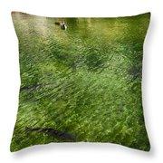 White Water Preserve Throw Pillow