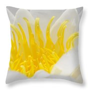 White Waterlily Detail Throw Pillow