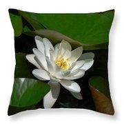 White Waterlily Lotus Throw Pillow