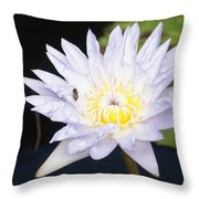 White Waterlily With Fly...   # Throw Pillow