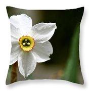 White Wind Bravery Throw Pillow