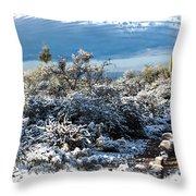 White Winter In The Desert Of Tucson Arizona Throw Pillow