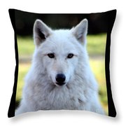 White Wolf Close Up Throw Pillow