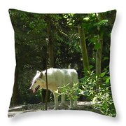 White Wolf In Forest Throw Pillow
