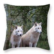 White Wolf Pair Throw Pillow