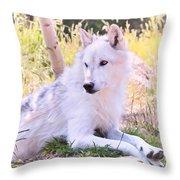White Wolf Taking It Easy Throw Pillow