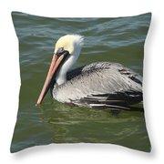 Whiteheaded Pelican Throw Pillow