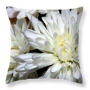 Whites Throw Pillow