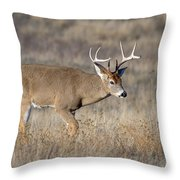 Whitetail Buck On The Move Throw Pillow