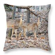 Whitetail Duo Throw Pillow
