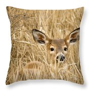 Whitetail In Weeds Throw Pillow