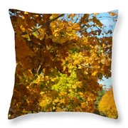 Whiting New Jersey Throw Pillow
