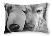Who Has The Biggest Nose Golden Retriever Dog  Throw Pillow